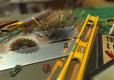 Micro Machines World Series + Bonus